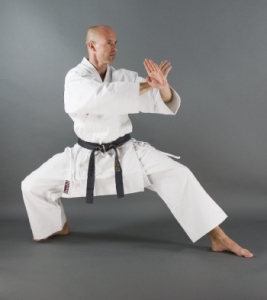 Kamikaze Karate Gi -Monarch