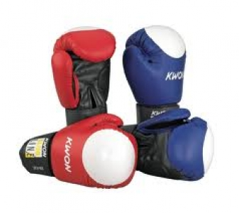 KWON Boxhandschuhe POINTER - mehrfarbig