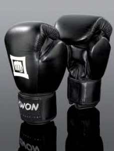 KWON Boxhandschuhe Sparring Champ